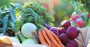 Vegan 30 – 5 days in