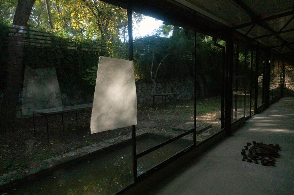 'Prehensile Trunk I' (2019) Etching, on Kozo Paper, Thread, Sunlight, 52.5 cm  x  42.5 cm