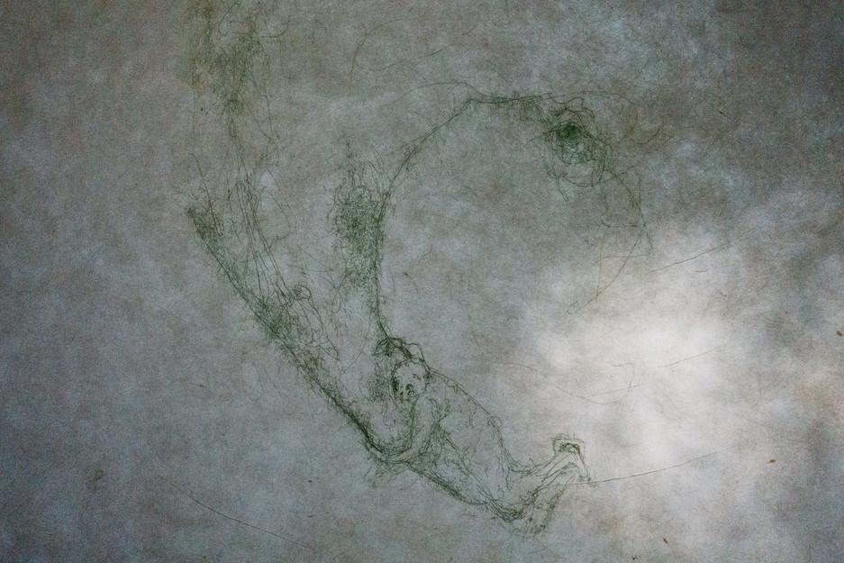 'Prehensile Trunk II' (2019) Etching, on Kozo Paper, Thread, Sunlight, 52.5 cm  x  42.5 cm
