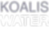 koalis water logo dec 3.png