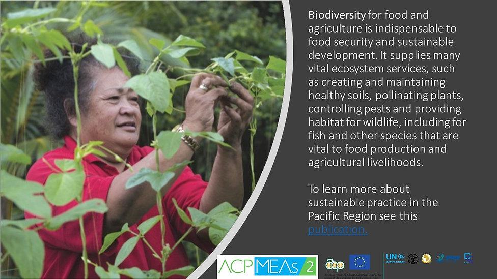 Biodiversity in Agriculture  (1).jpg