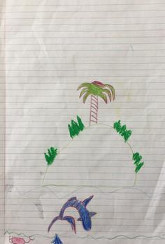 Liam Scanlan Yr 3 Vaiala Beach School