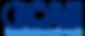 logo blu con bordo.png
