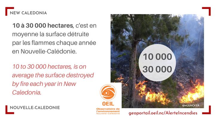 Bushfires in New-Caledonia