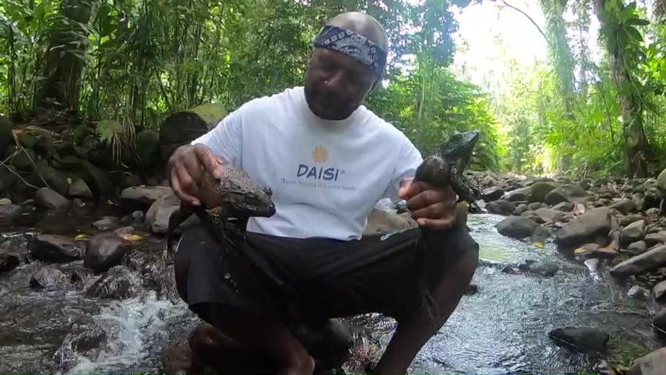 Solutions écologiques - Îles Salomon