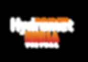 hydromet india virtual logo white.png