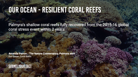 Our Ocean - Resilient Coral Reefs