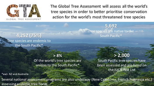 The Global Tree Assessment in the South Pacific