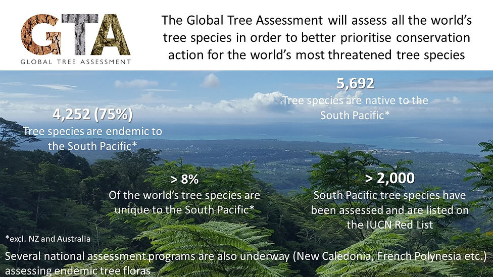 Global Tree Assessment in the South Paci