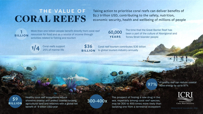 6 Indicators for the Health of Coral Reefs
