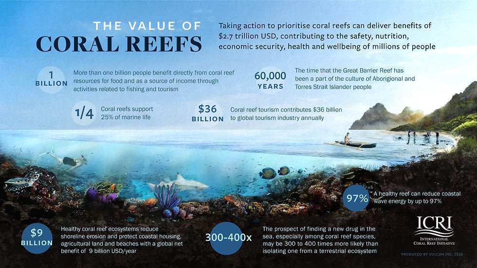 ICRI_Coral reef Value-scaled (1).jpg