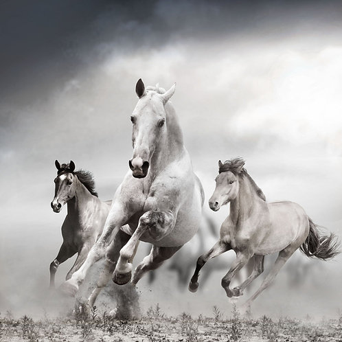 #010 RUNNING WHITE HORSES GLASS WALL ART