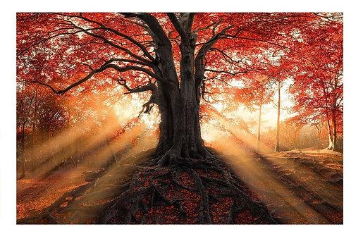 #021 RED TREE GLASS WALL ART