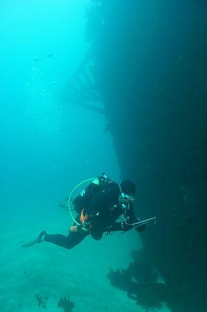 Craig Johnston_Paihia Dive_DSC07559.JPG