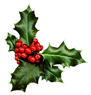 holly-983x1024.png