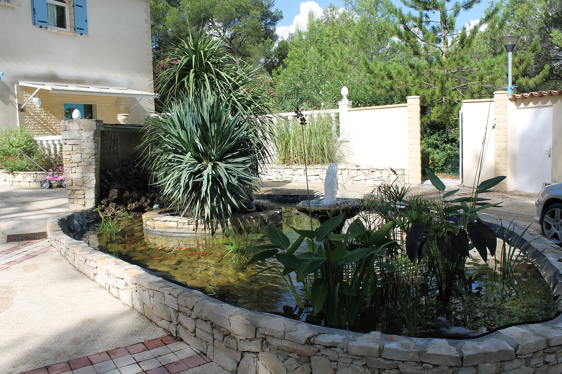 Cr ation de bassin paca green lagoon - Plantes bassin de lagunage aixen provence ...