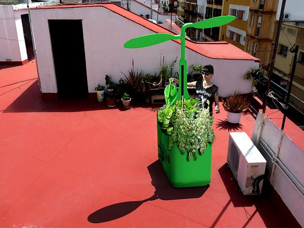 Liberto Green mejorada.jpg