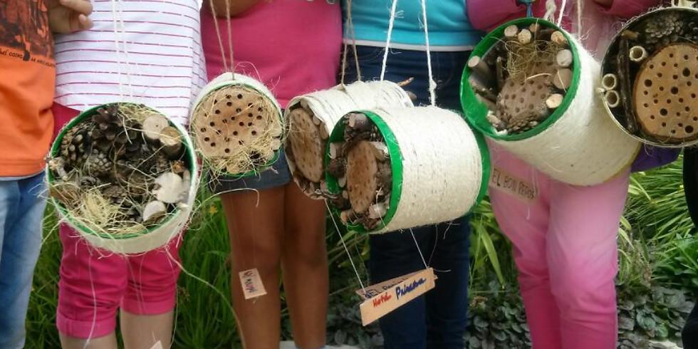 Descobrim els insectes de la Serralada Litoral! (Cabrils)