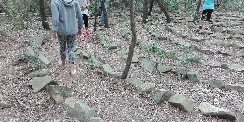 Connectem-nos al Bosc (Cabrils)