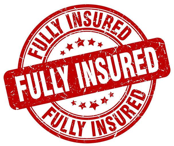 fully-insured-red-grunge-stamp-vector-16766113_edited.jpg