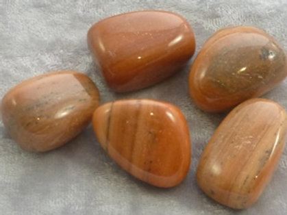 JASPER ORANGE STRIPE