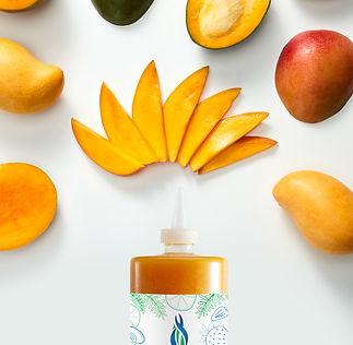 00676235012424 - Mango Puree S - Infusio