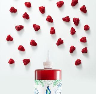 00676235012448 - Raspberry Puree S - Inf