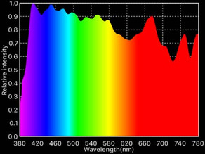 What to Consider About Color Spectrum When Lighting Animals?By Bill Little