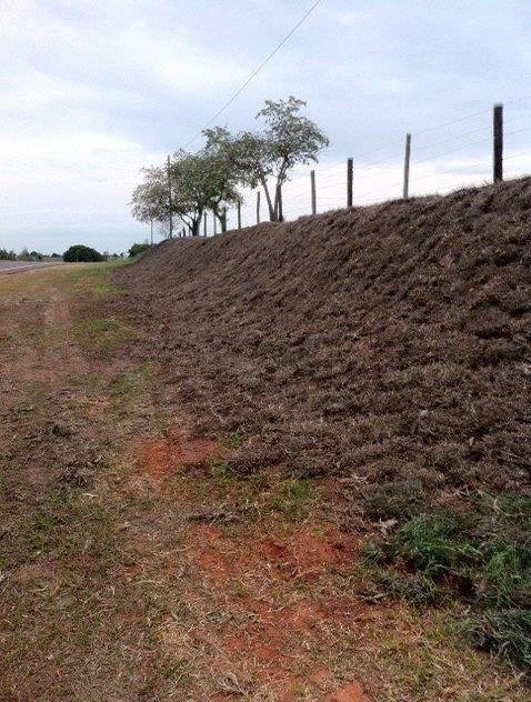 Passivo Ambiental - Ao Longo da Rodovia (11)