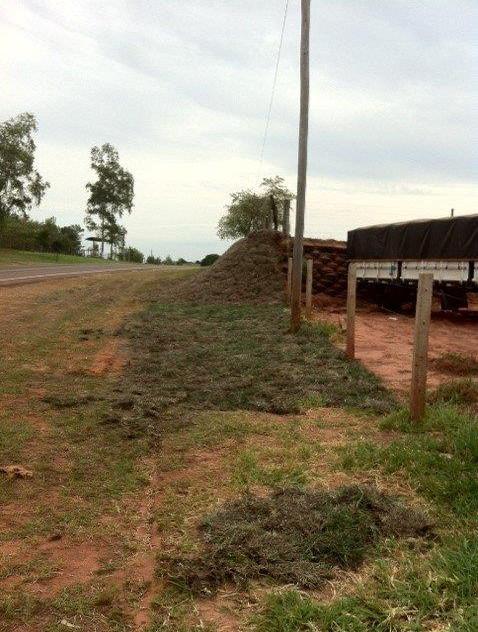 Passivo Ambiental - Ao Longo da Rodovia (23)