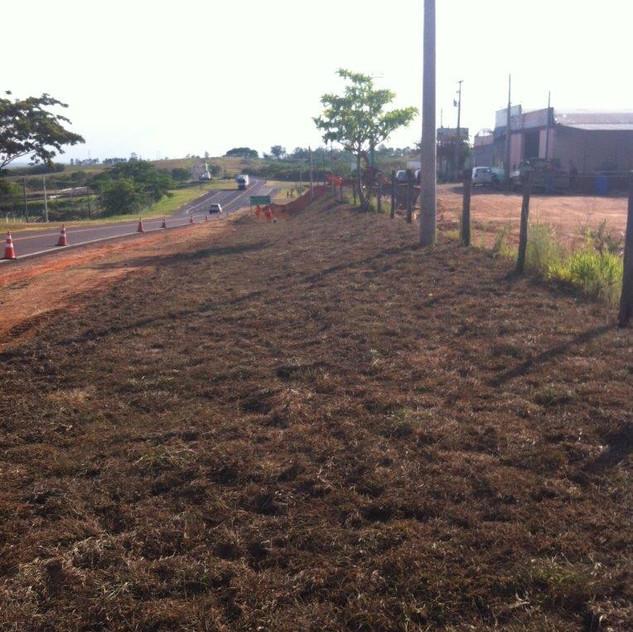 Passivo Ambiental - Ao Longo da Rodovia (2)