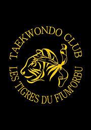Taekwondo Ghisonaccia tiger team