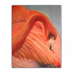 Flamingo ll