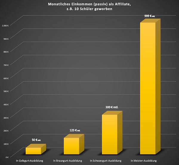 20200817_Einnahmen als Affiliate v01.png