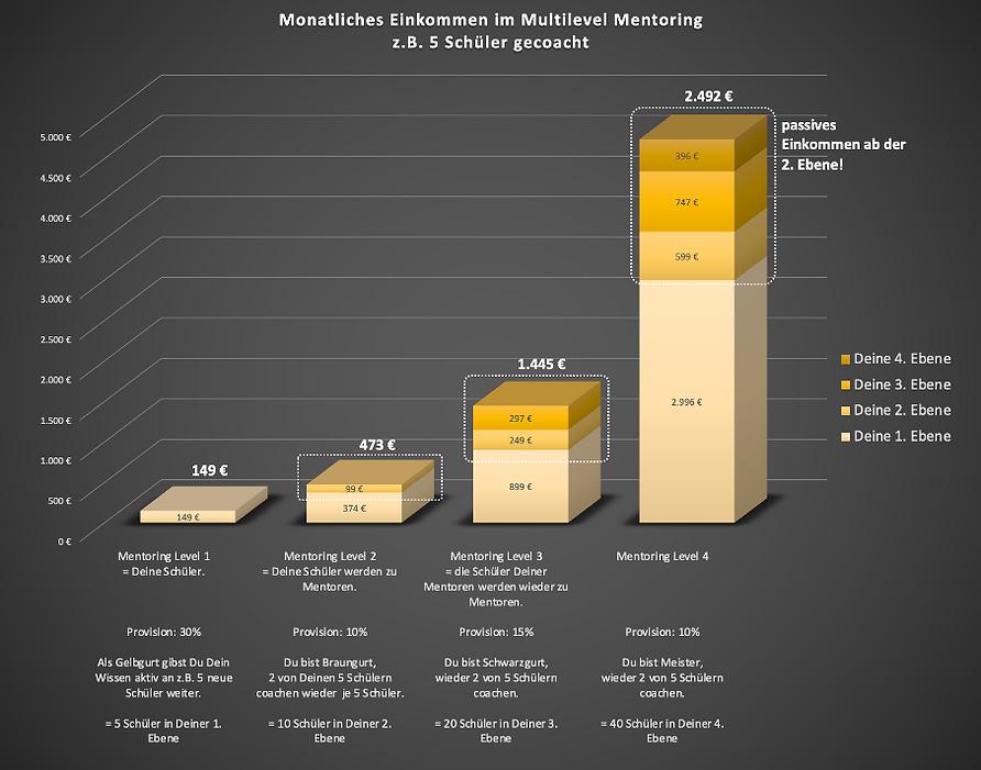 20200817_Einnahmen als Mentor v02.png