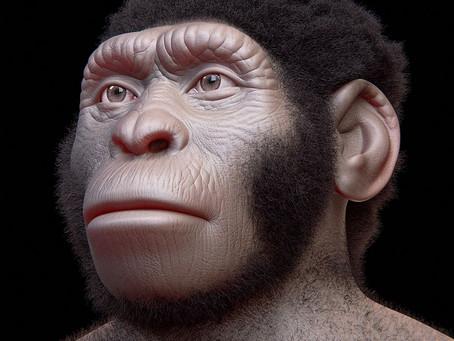 Homo Naledi Bones Shows They Coexisted with Homo Sapiens !