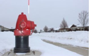 adopt hydrant DP.jpg