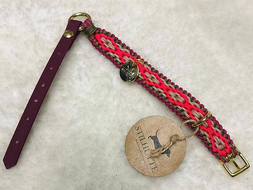 Collier pour chien rose fuschia
