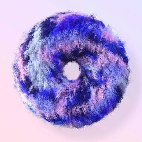 hairy_donut.JPG