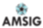 amisg-logo-rectangle-125.png
