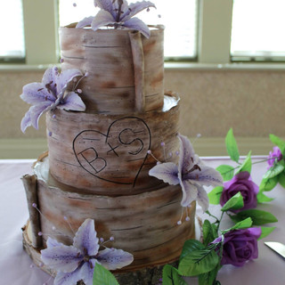 tree bark cake.jpg