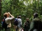 kibale forest2.jpg