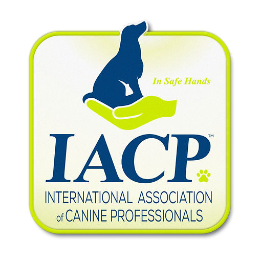IACP logo.jpg