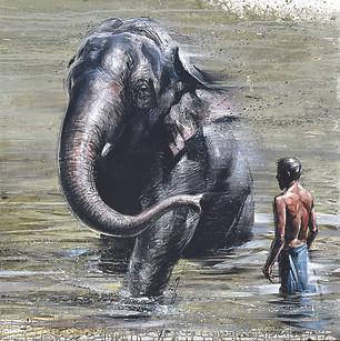 SRI LANKA, Le grand bain