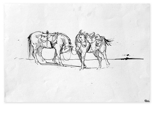 Chevaux scellés (28 x 42 cm)