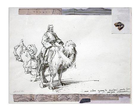 Mongolie, Bactriane (40 x 50 cm)