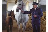 Arabian horse magazine n°4 Emmanuel Michel livre Voyage a Pays de Zingaro peintures dessins sculptures Bartabas