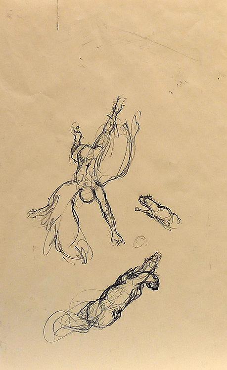 Zingaro, Ange et chevaux vus du ciel (57 x 35 cm)
