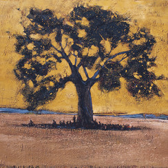 TANZANIE, Baobab