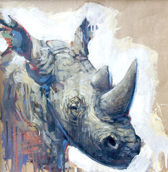 NAMIBIE, Petit rhino